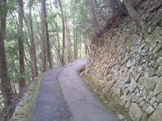Yoshida_004