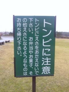 Hamada_023